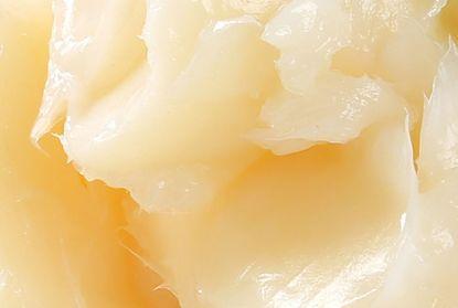 Cebolla en pasta